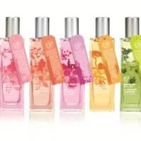 The Body Shop : Voyage autour du monde