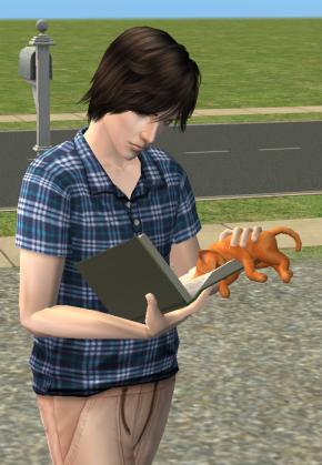 Prendre un chat pour lire, abeille, la tête dans les pages toé.